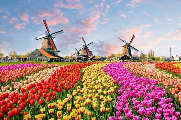 حدائق امستردام