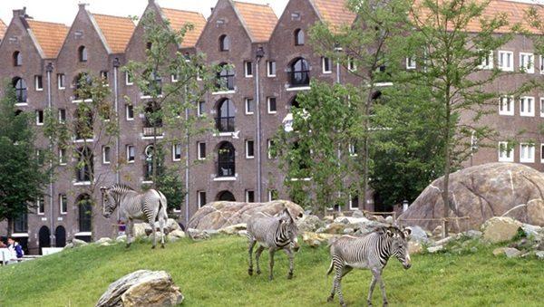 معالم امستردام السياحية