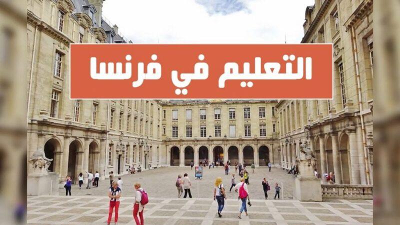 التعليم فى فرنسا