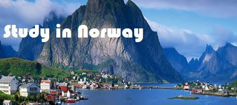 دراسة الطب في النرويج ... تعرف على أهم شروطه وتكاليف الدراسة
