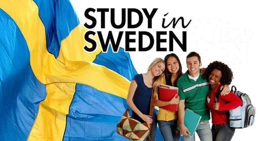 الدراسة فى السويد