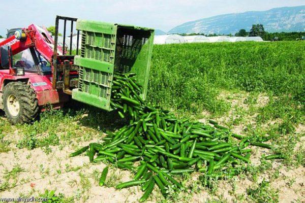 الزراعة في ألمانيا