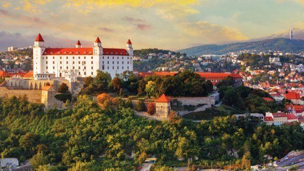 راسة الطب في الجامعات السلوفينيه