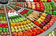 الزراعة في المانيا ... التحول إلى الأساليب العضوية