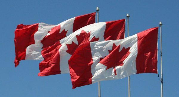 اللجوء إلى كندا عن طريق الإنترنت