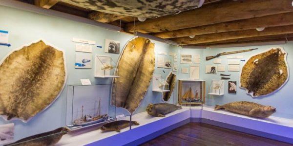 متحف بولاريا في ترومسو
