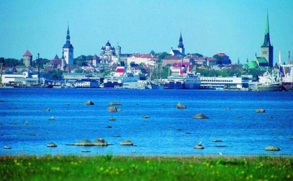 الصيف فى استونيا