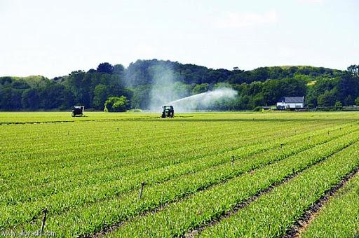 الاستثمار الزراعي في اوكرانيا