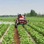 الاستثمار الزراعي في بلغاريا .. تعرف على أسباب الإهتمام بالإستثمار الزراعى