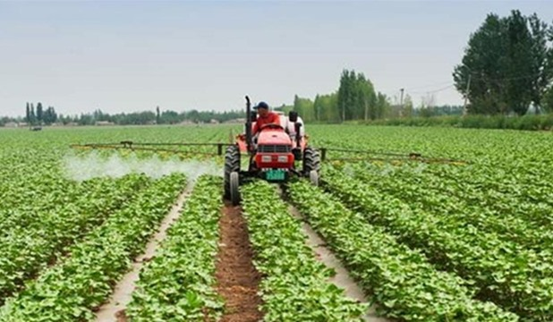 الاستثمار الزراعي في بلغاريا.