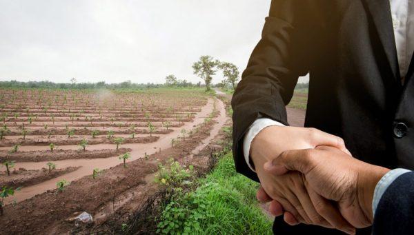 مميزات الإستثمار الزراعى فى بلغاريا