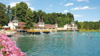 Photo of السياحة العلاجية في المجر .. تعرف على المستشفيات والعيادات الصحية بها