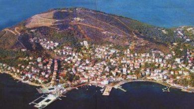 Photo of الذهاب الى جزيرة الاميرات .. تعرف على طرق الوصول إليها وأبرز الأماكن السياحية بها