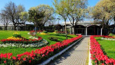 Photo of حديقة فلوريا اسطنبول .. تعرف على الأنشطة التى يمكن ممارستها بها وكيفية الوصول