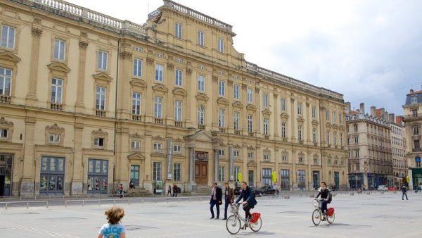متحف الفنون الجميلة