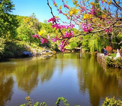 حديقة اربورتوم