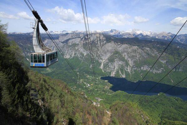 جبل vogel