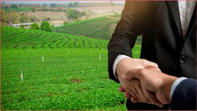 Photo of الاستثمار الزراعي في اسبانيا