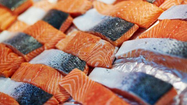 أفضل أنواع السمك النرويجى