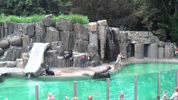 حديقة حيوانات براغ